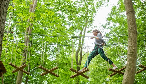 Running Through The Trees On Go Ape Tree Top Adventure At Chessington World Of Adventures Resort
