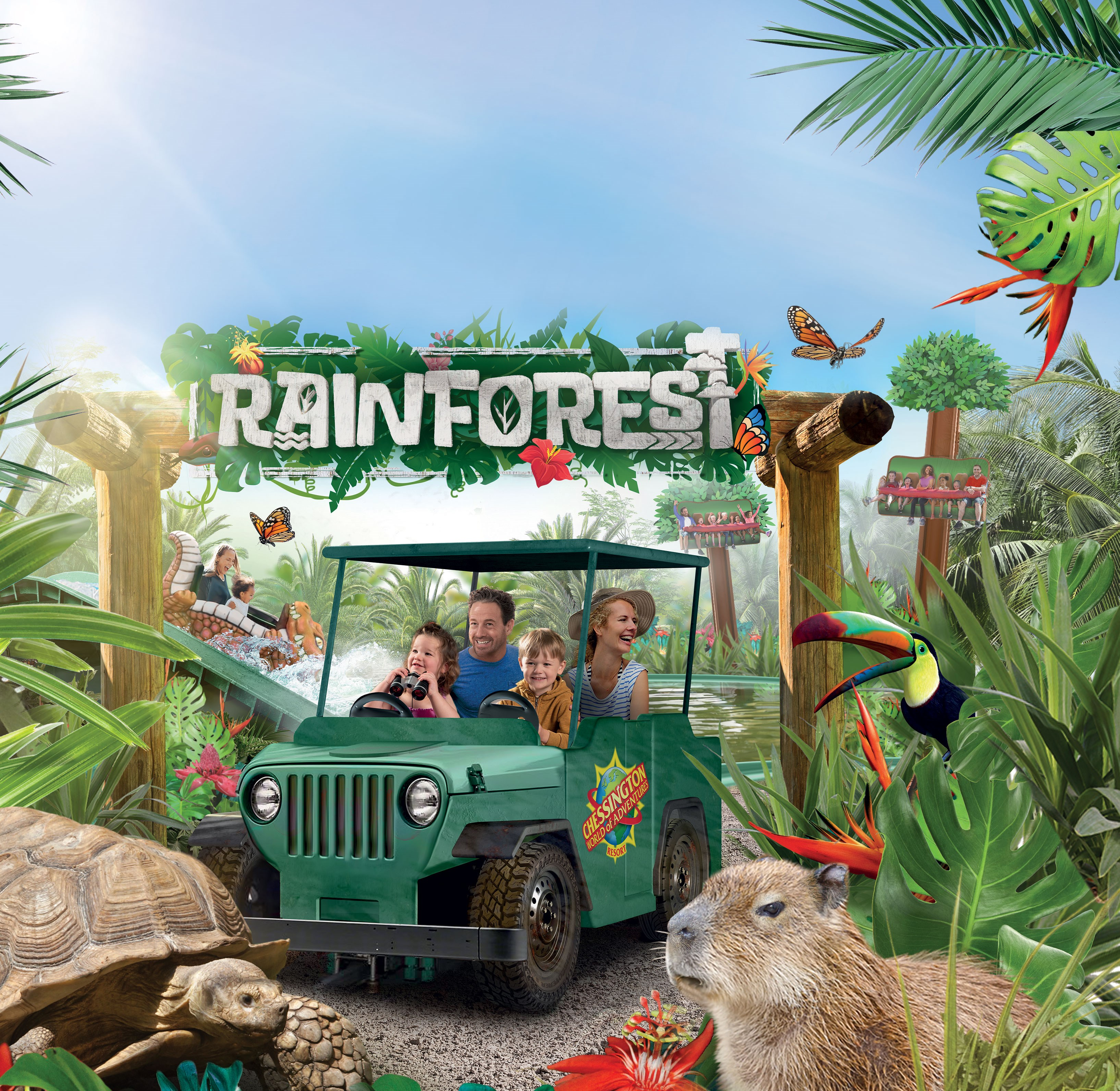 The Rainforest Websitev2