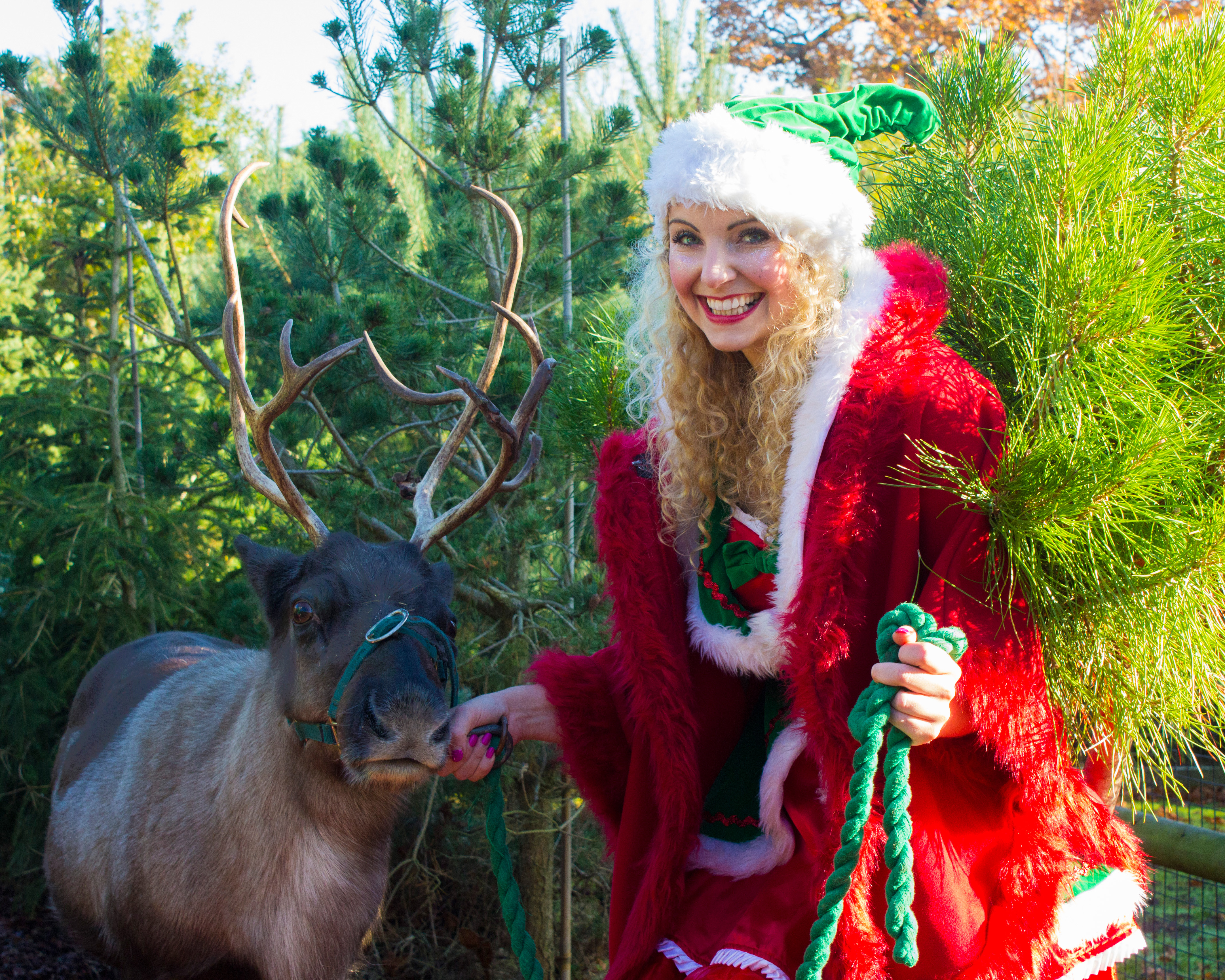 Elf With Reindeer 2