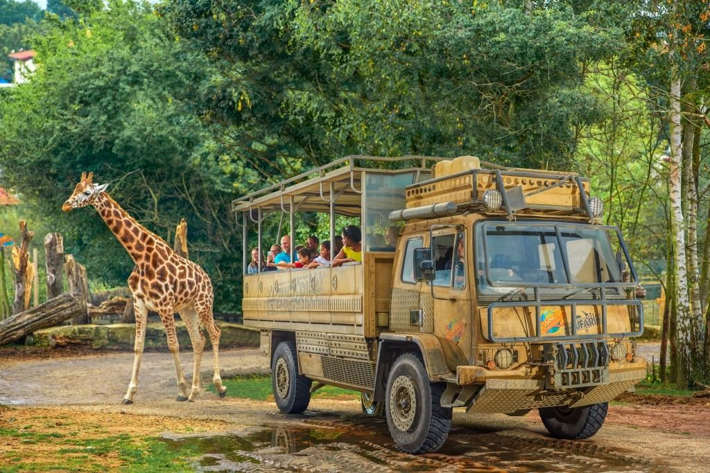 ZUFARI At Chessington World Of Adventures Resort Copy