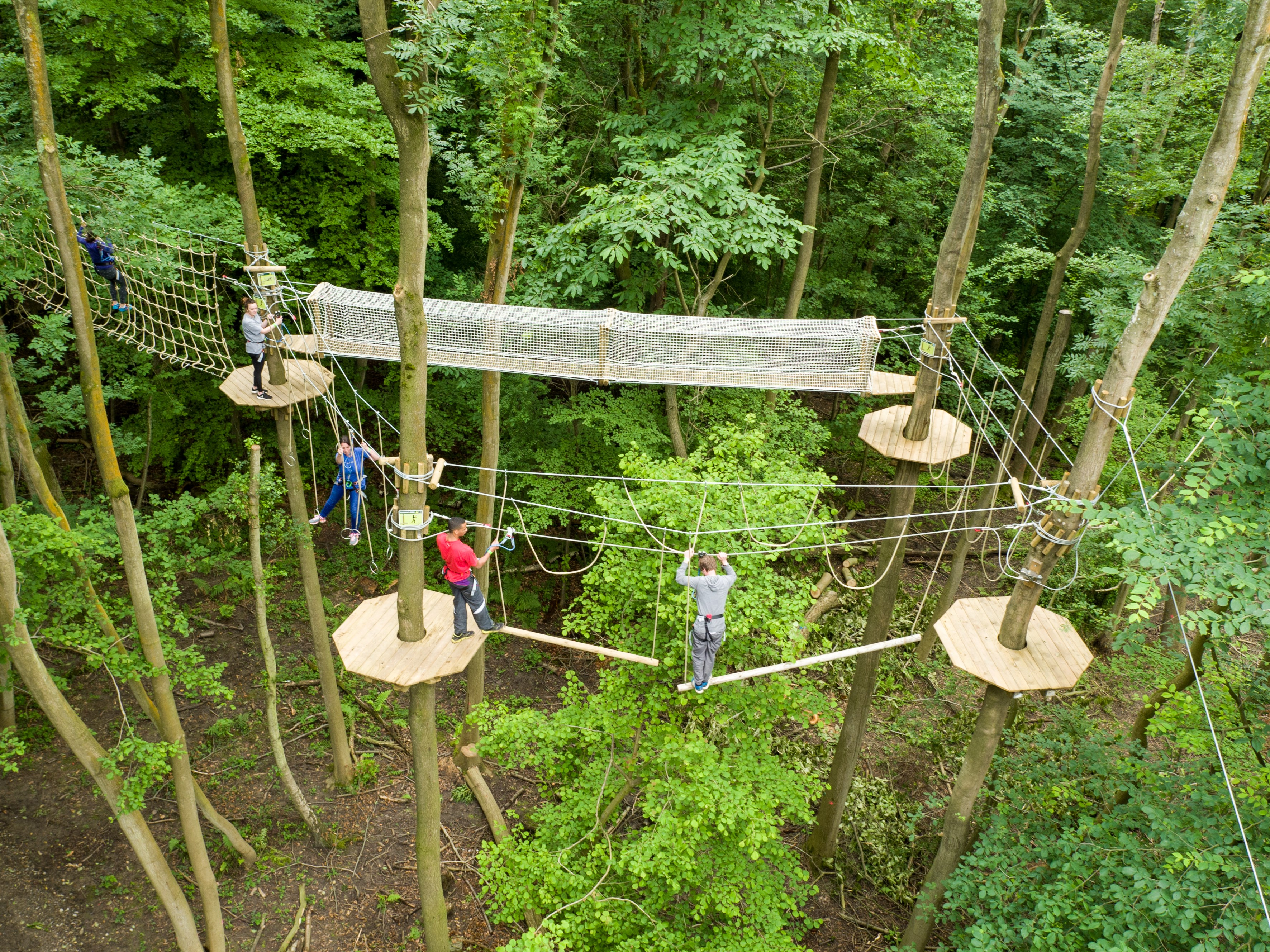 Brand New Go Ape Tree Top Adventure At Chessington World Of Adventures Resort