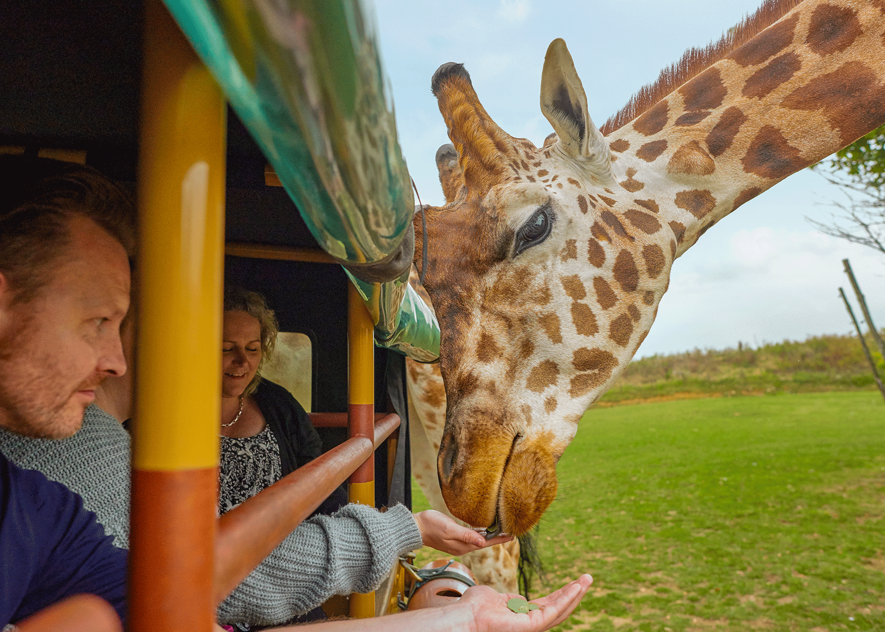 Chessington Zoo VIP Animal Experiences